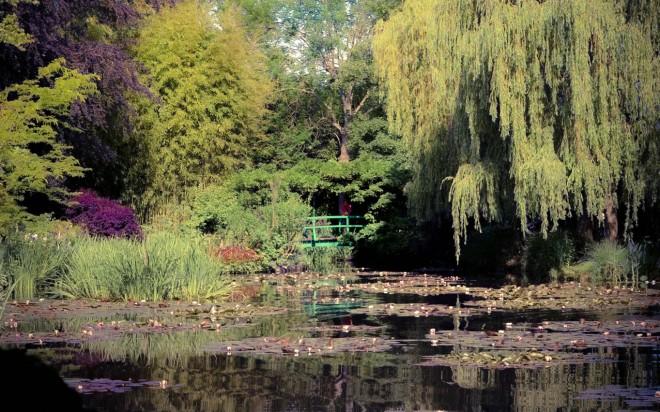 Monet Garden Pond